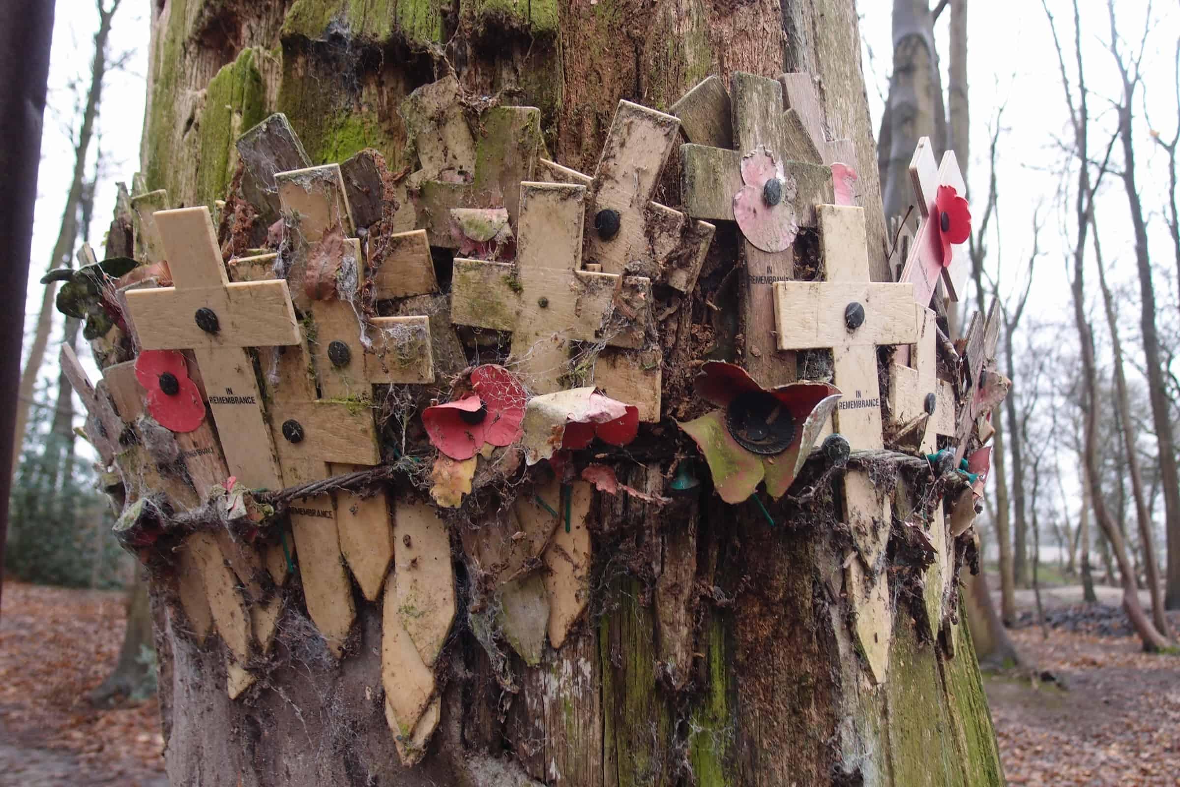 Memorial for the fallen at Sanctuary Wood. Photograph © www.foxtrotfilms.com