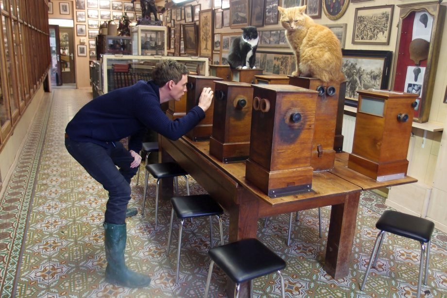 Eddie Redmayne in the Sanctuary Wood Museum, Ypres.  Photograph © www.foxtrotfilms.com
